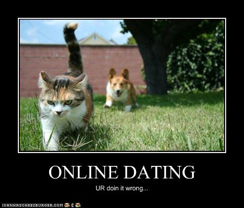 lolcats dating I can has cheezburger channels lolcats fail blog fail blog after 12 autocowrecks dating fails fail nation failbook.