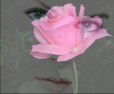 http://3.bp.blogspot.com/_Kpeov3_d-aU/Sscw-Iel2KI/AAAAAAAAGlY/8bg3lpc04m8/s400/A+mulher+e+a+rosa.jpg
