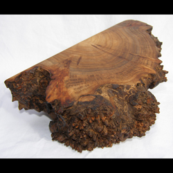 Filbert Burl Box from Eugene, Oregon