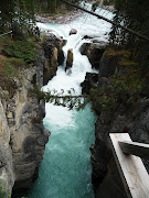 Sunwapta Falls~Icefields Parkway, AB