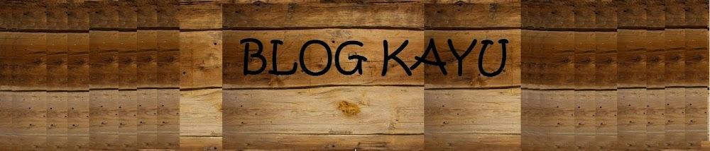 Blog kayu