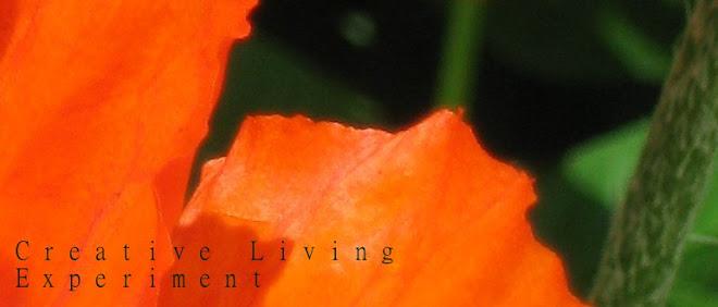 Creative Living Experiment