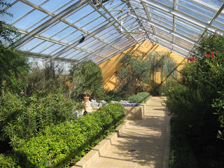 The Mediterranean House Is Filled With Silvery, Small Leaved Plants And  Shrubs, And The Overwhelmingly Strong Fragrance Of Rosemary And Scented  Geranium ...