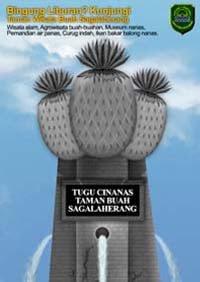 print ad iklan cetak tugu nanas sagalaherang
