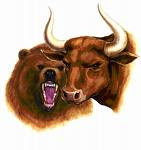 How to invest in Indian Stock Market?- Bear and Bull