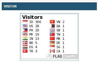 visitor_widget_1