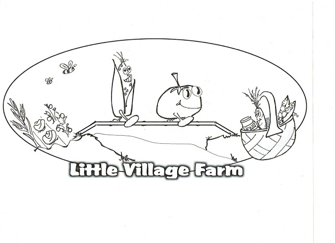 Little Village Farm