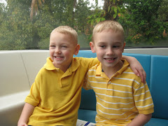 Brother Love  Disney 2009