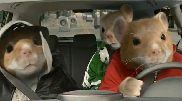 Kia Soul TV ad with hamsters