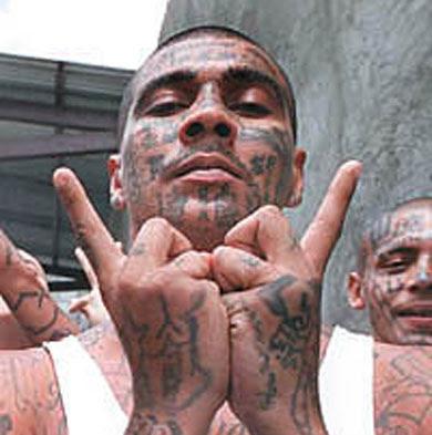 criminals obama protecting