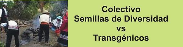 Semillas de Diversidad vs Transgénicos