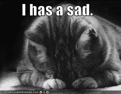 LA Noire looks win. Sad+lol+cat