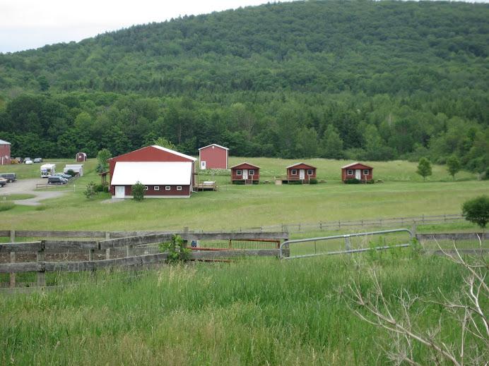farm sanctuary, watkins glen, NY