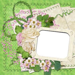 http://elena-googlehelpcentergooglehelpb.blogspot.com/2009/05/qp_24.html