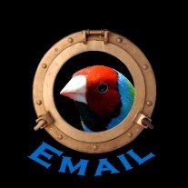 Email:Fonte de informações e Pesquisas