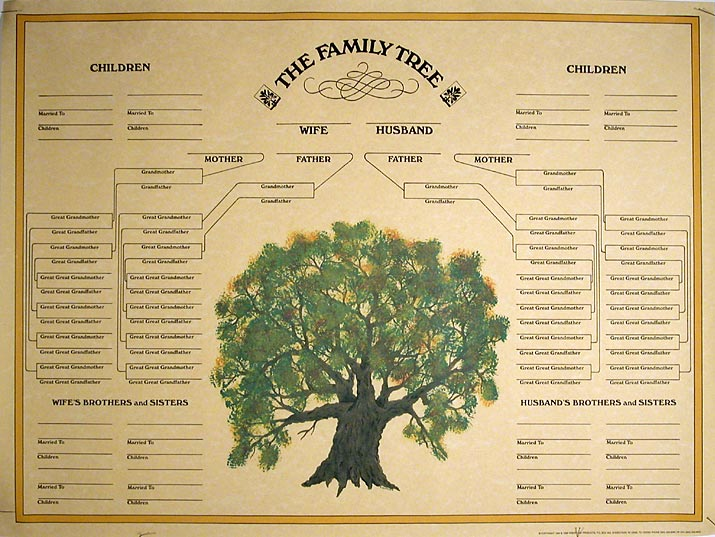 blank family tree template or