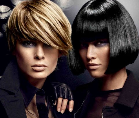 black hair color trends 2010. hair color chart redken.