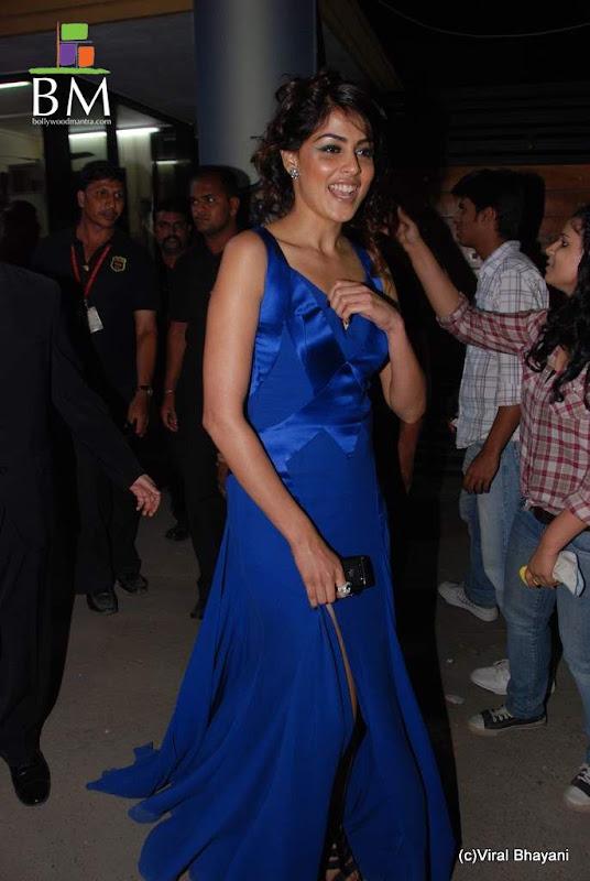 Photos Genelia at th Idea Filmfare Awards photos cleavage