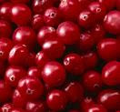 cranberries flush out fats and lose weight