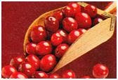 Firm Tummy with Cranberries