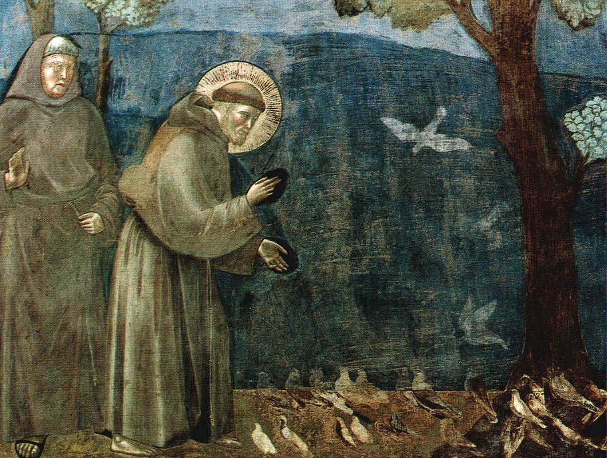 São Francisco prega aos pássaros