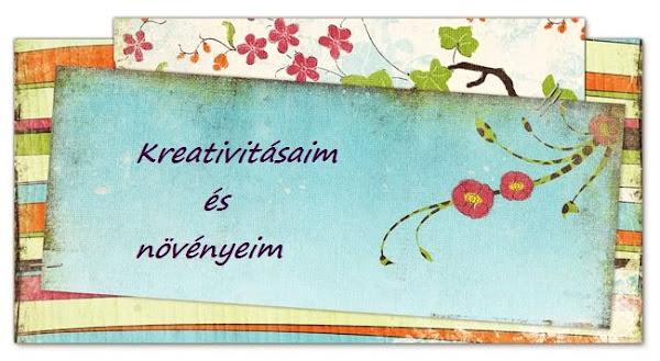 Kreativitásaim és növényeim