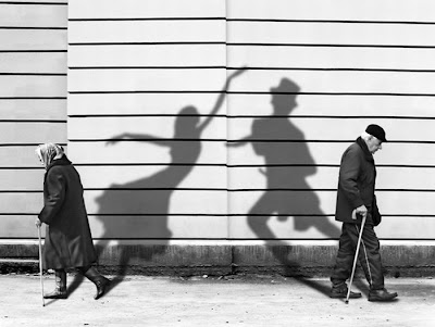 amazing Shadow Arts