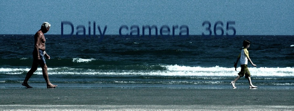 Daily Camera 365