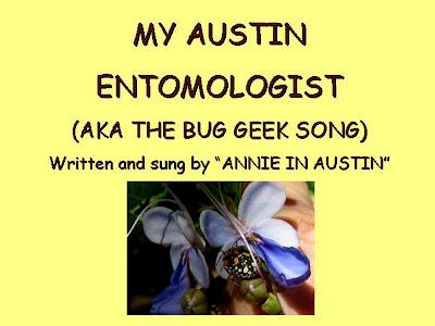 My Austin Entomologist,AnnieinAustin