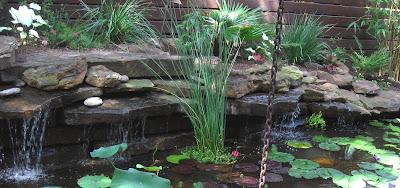 Annieinaustin, pond 1, view