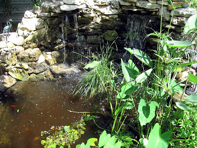 Annieinaustin, pond 9 waterfall