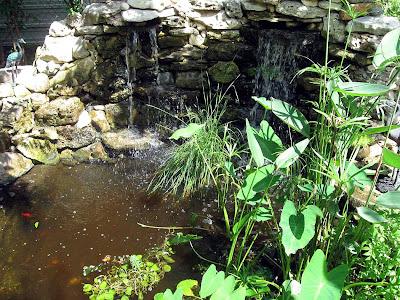 Annieinaustin, pond 9 waterfall