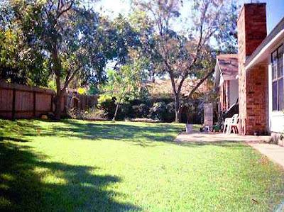 Annieinaustin yard Before