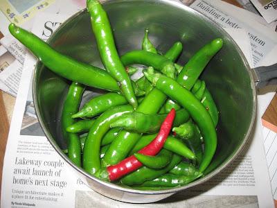 Annieinaustin, Garden Salsa peppers