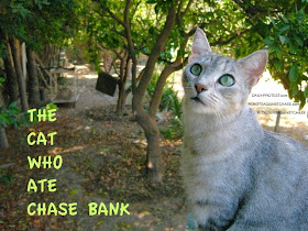 THE CAT WHO ATE CHASE BANK, the BOOK is coming, the blog is already here.