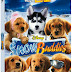 PRESS RELEASE: SNOW BUDDIES on DVD Feburary 5th, 2008