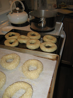 boil n seed bagels