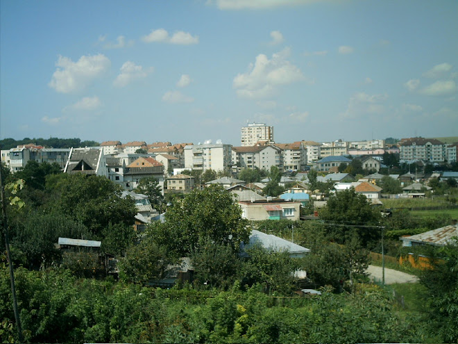 Orasul Dorohoi / BT