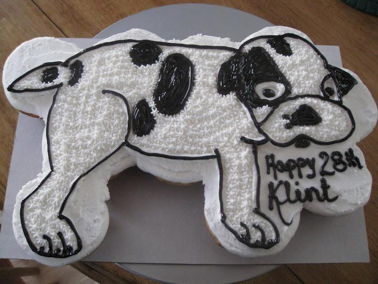 A Boston terrier named Ruca!