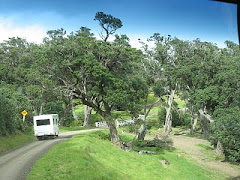 Motorhoming in NZ