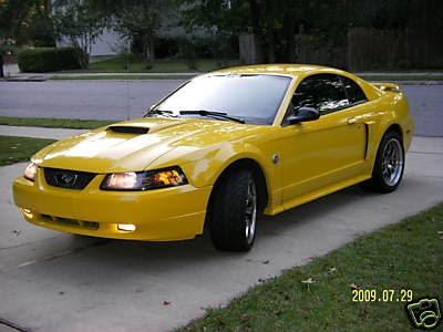 2004 40th anniversary mustang gt ford mustang. Black Bedroom Furniture Sets. Home Design Ideas