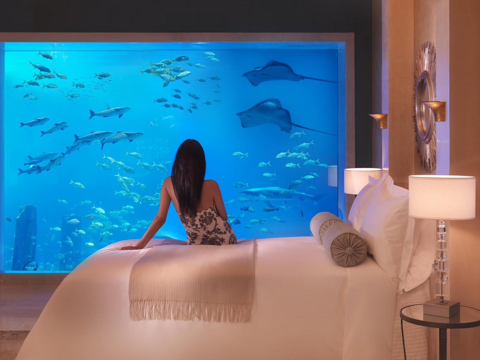 The 7 Most Expensive Hotel Rooms in UAE's Atlantis Dubai11