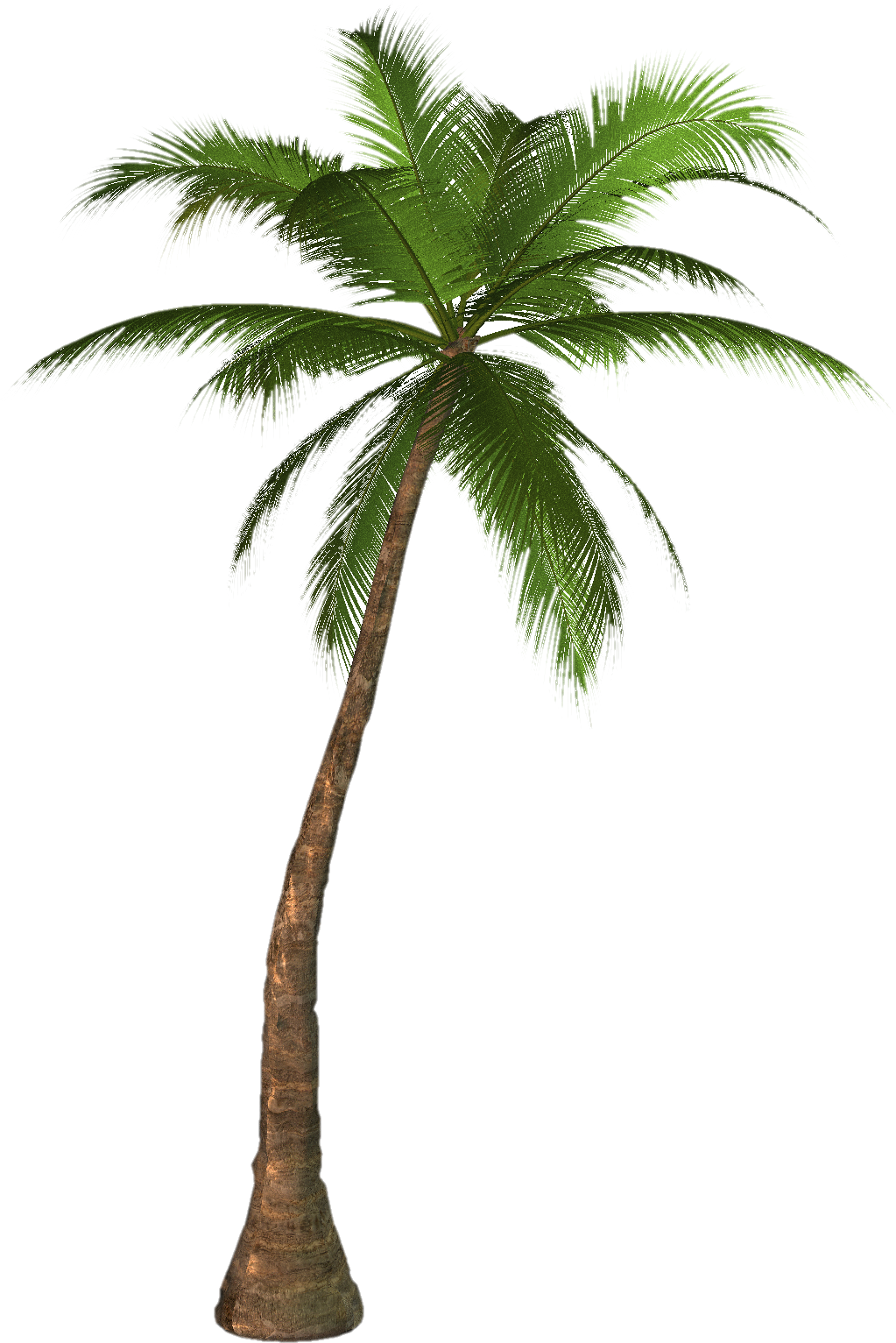 palm tree png: freehighresolutiongraphicsandclipart.blogspot.com/2010/09/blog-post...