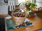 Una cesta de castañas