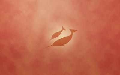 Baixar Natty Wallpaper - Orange