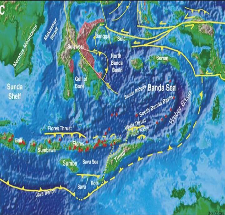 Evolusi Tektonik Indonesia