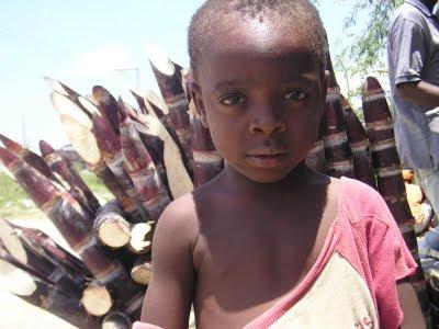 Haití,no más dolor