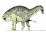 Dicraeossauro