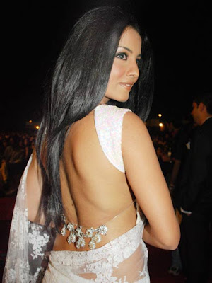 celina jaitley in saree