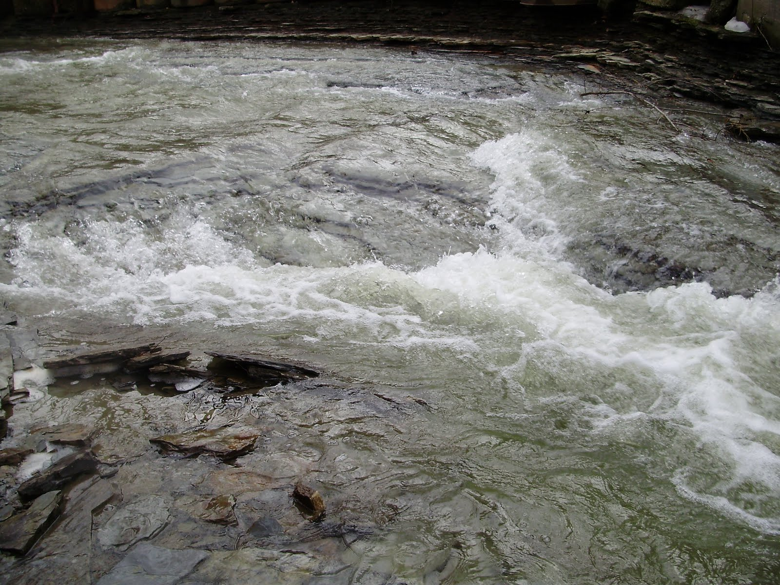 The slippery trout a fly fishing blog fly fishing for for Steelhead fishing pa